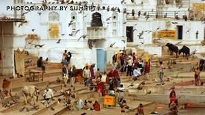 The Pushkar...1 by gotosumeet