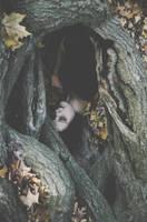autumn sleeps by beyondimpression