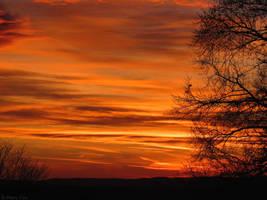 Golden Sky by brittanyfay