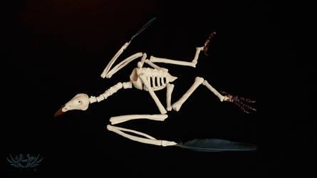 Sacred Skeleton by Shi-Gu