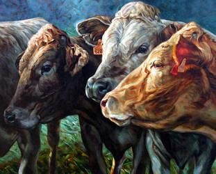 cattle 3 by bastienmillan