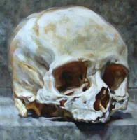 skull 3 by bastienmillan