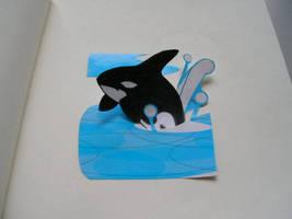 killerwhale by obojdite
