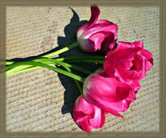 A Tribute to You by DanaAnderson