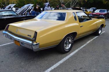 1973 Chevrolet Monte Carlo IV by Brooklyn47