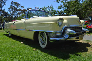 1955 Cadillac Series 62 Convertible X by Brooklyn47