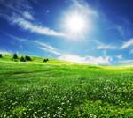 Sunny Days by kokoShadow