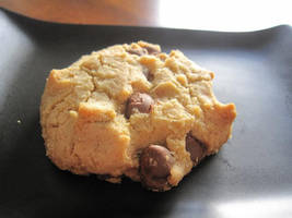Milk Chocolate Chip Cookies by maytel
