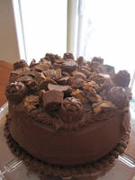 Peanut Butter Cup Cake by maytel
