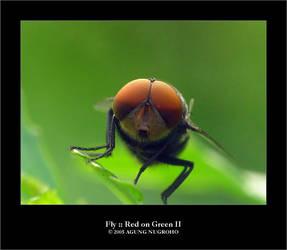 Fly :: Red on Green II by patul