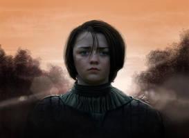Arya Stark by MattiasArt