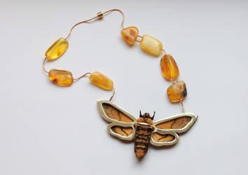 Moth 2 by Ajsena