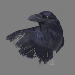 Raven by Viippu