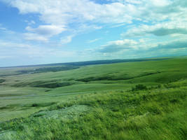 Premade Green Field stock by Nahuale11