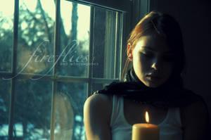 Fireflies and windowpanes by Zaratops