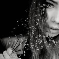 ma fleur by Zaratops