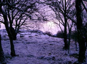 Faeries Wood 2 by Mookeynuts