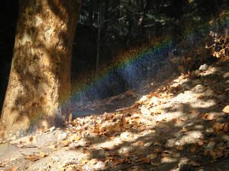 The dark side of the rainbow by GLC19