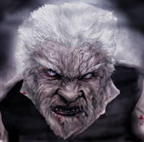The Wolfman Sr by dcbats2000