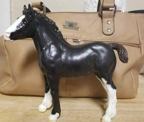 Custom Breyer Foal by JenniferBee