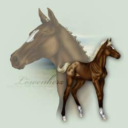 Loewenherz as Foal by Tigra1988