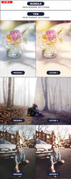 TEN - photoshop Actions BUNDLE by PSActionsONLY