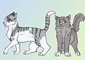 Ivypool and Dovewing by paintedpaw-cat