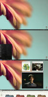 Desktop C102011 by Monstruonauta