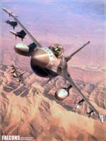 Falcons by GrahamTG