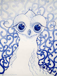 friendly female owl by BastianSchreck