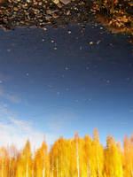 Autumn by Koggamojj