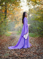 Arwen Undomiel - Autumn in Rivendell by Eleonora-Croft