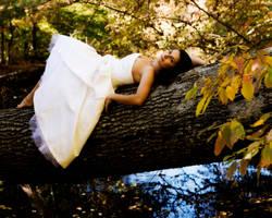Trash The Dress: Nikki 9 by jasgreg