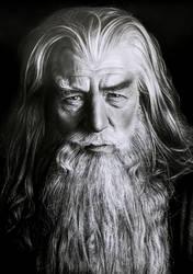 Gandalf by diogenesdantas