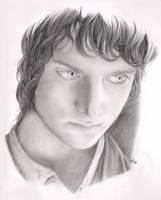 Frodo by Aniviel