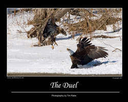 The Duel by Merlinstouch