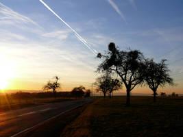 Landscape by concane
