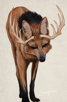 Maned Wolf with Antlers by Bluelioness