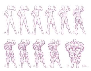 Size Chart #5: Muscle by MoxyDoxy
