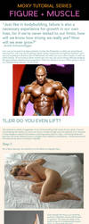 Figure and Muscle Tutorial by MoxyDoxy