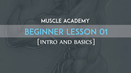 Muscle Academy: Beginner Lesson 01 by MoxyDoxy