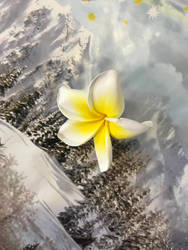 Yellow white flower by sophiexxth