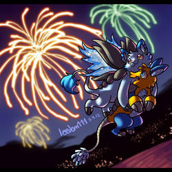 Look at the Fireworks! by leedom111