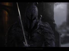 Dark Knight by MetolGuy