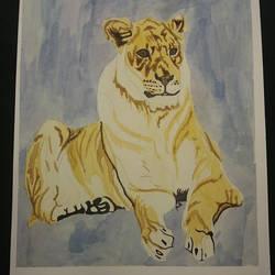 Panthera leo by pcitr
