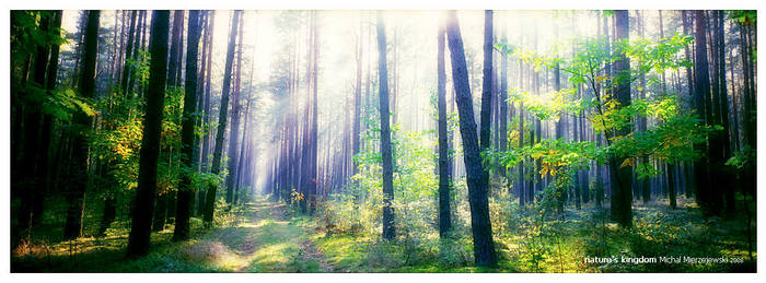 Nature's Kingdom by werol