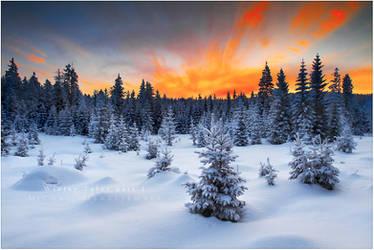 Winter Tales part 1 by werol