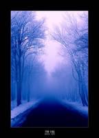 the fog by werol