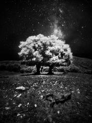 a different space by werol