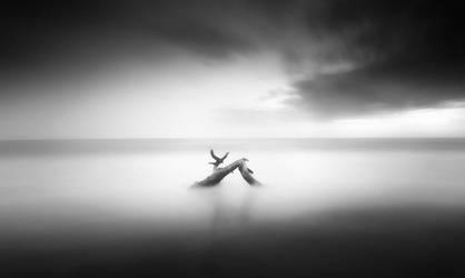 drifting into deep by werol